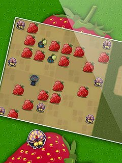 Image Berry Bug
