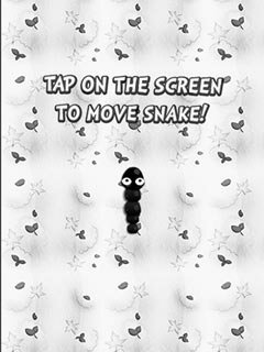 Image Black and white snake